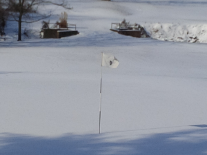 A winter's day on the 18th green at the Gay Brewer Jr. Course at Picadome.