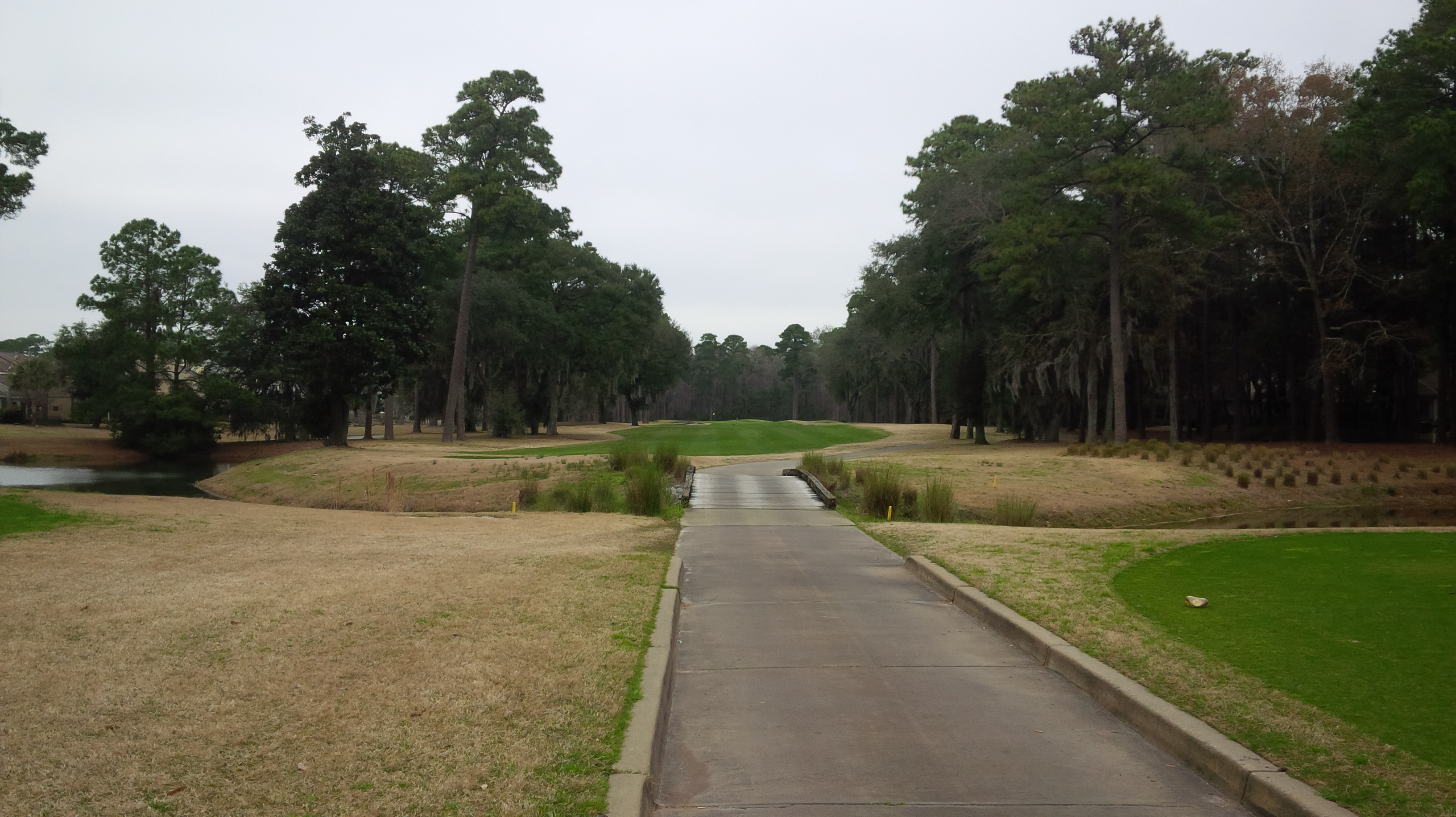 golden bear golf At hammock creek golf club we provide the best option for palm city golf, and we can't wait to share it with you address: 2400 sw golden bear lane palm city, fl 34990 phone: 772-220-2599 weather tue high 68 low 47 wed high 69 low 46 thu high 69 low 48 fri high 74.