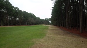 The hallway that is the 9th fairway at Oyster Reef.