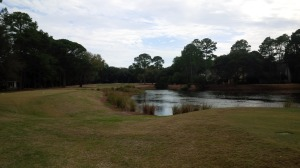 Palmetto Hall - Hills No 12