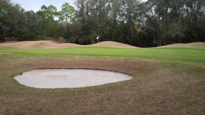 Palmetto Hall - Hills No 15