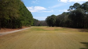 Palmetto Hall - Hills No 7