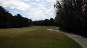 Palmetto Hall - Hills No 8