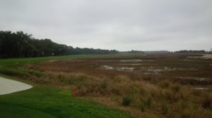 At least I can say I kept my ball out of the marshes and the Calibogue Sound, which is more than several PGA Tour pros could say Saturday.