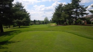 The best of Kentucky: smooth, lush spring bent grass tee to green, with a fescue & bluegrass mix in the rough.