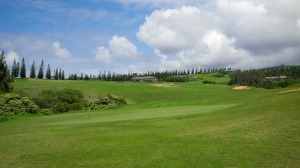 By the time we reached the 1st green, I was already thankful for my Plantation Course experience.