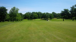 A look at the 14th green from halfway down the fairway.