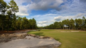 """By removing 40+ acres of turf from the rough and restoring the """"native areas"""" of North Carolina's sand hills, Pinehurst No. 2 doesn't look like most American golf courses."""