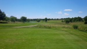 With water and knee-high fescue in play, the tee shot at 14 is a testy a drive as you will find on a short par 4.