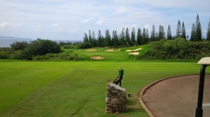 The 8th hole on the Kapalua Plantation course looks benign enough until you step onto the tee.
