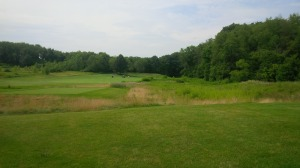 There really was a risk/reward decision on almost every hole, like the short par 4 11th hole pictured here.