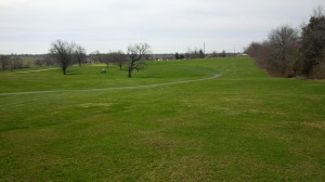 It can be a little difficult to distinguish the fairway from the rough at Cassell Creek.