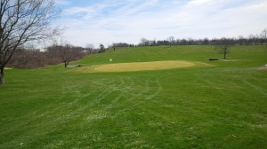 The light colored oasis of the 8th green provided refuge from the clover, poa annua, and native grasses on the majority of Cassell Creek's surfaces.