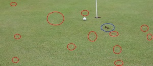 Just in case you're confused what I'm ranting about, this is from the same picture above, with the old, unrepaired pitch marks circled for you.
