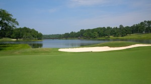 I'm not necessarily a fan of par 3's as closing holes. However, the Lake Course's 15th hole is such a magnificent hole that it could bear the weight of being the lasting memory for all 18 holes.