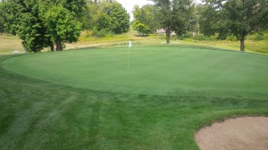We had a fair bit of fun getting in some extra putting practice on the course as we waited on successive holes.