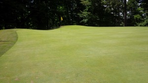 I'm not sure still photography adequately captures how large or how sloping the greens are at My Old Kentucky Home State Park Golf Course.