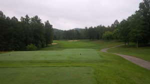 The gentle dogleg of the gorgeous 2nd fairway gives the player a choice of going over or around the forest.