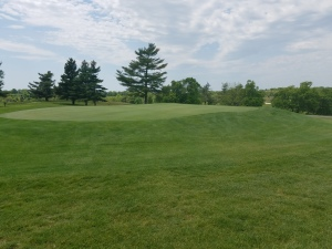 A majority of Lincoln Homestead's greens are of the push-up variety, seen here at the par 4 1st hole.