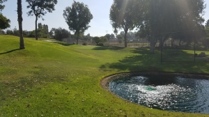 Colina Park Golf Course is full of surprises, like perfectly manicured ponds with liners.