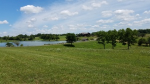 """The """"scenery"""" at the Thoroughbred G.C. includes magnificent views of this grand estate that borders the east side of the course."""