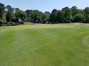 The 6th green, pictured here, provides an example of how water, sand, and contouring make approaching any green tricky.